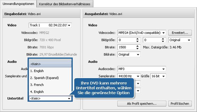 Wie konvertiert man Videos mit den Untertiteln? Schritt 3