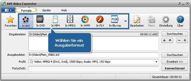 Wie verringert man die Größe der Eingabevideodatei mit dem AVS Video Converter? Schritt 3