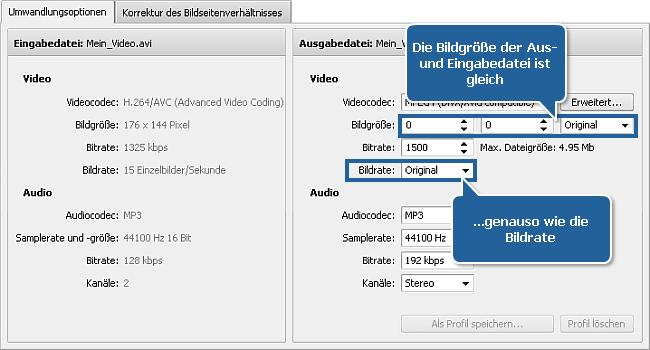 Wie verringert man die Größe der Eingabevideodatei mit dem AVS Video Converter? Schritt 4