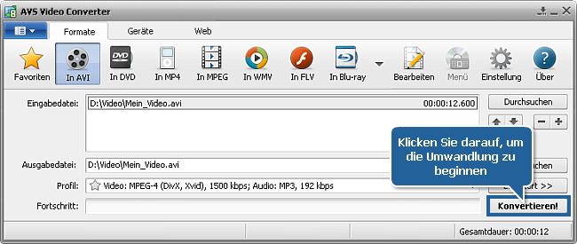 Wie verringert man die Größe der Eingabevideodatei mit dem AVS Video Converter? Schritt 7