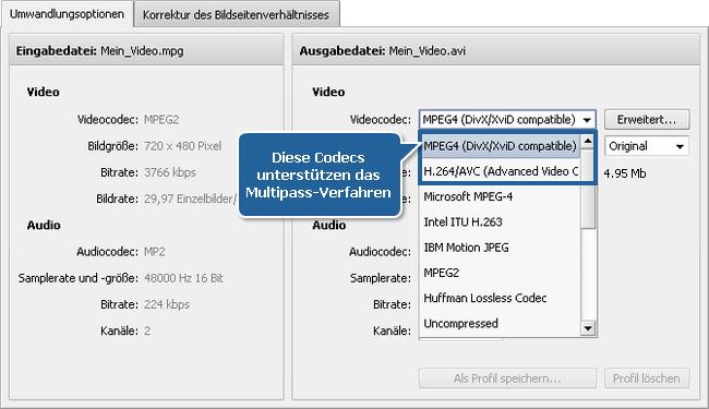 Wie führt man die Multipass-Umwandlung mit dem AVS Video Converter durch? Schritt 4