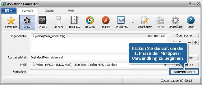 Wie führt man die Multipass-Umwandlung mit dem AVS Video Converter durch? Schritt 5