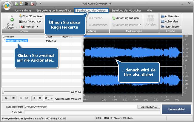 Wie exportiert man den Ton aus einer Videodatei mit dem AVS Audio Converter? Schritt 3