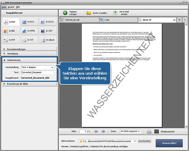 Wie kann man DOC/DOCX-Dateien ins PDF-Format umwandeln? Schritt 5