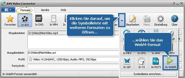 Wie konvertiert man Videos ins WebM-Format? Schritt 3