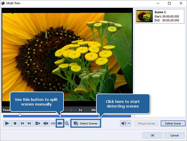 How to split videos using AVS Video Editor? Step 2