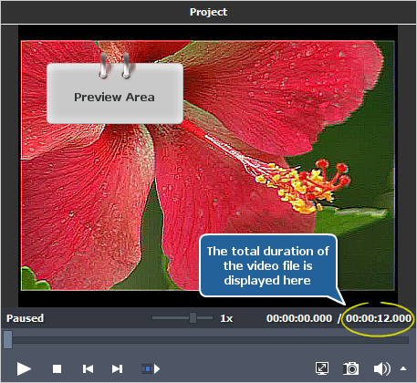 How to restore blurred video using AVS Video Editor? Step 2