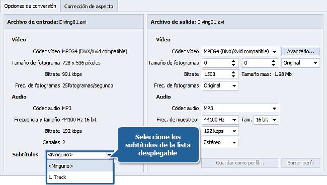 ¿Cómo convertir vídeo con subtítulos? Paso 3
