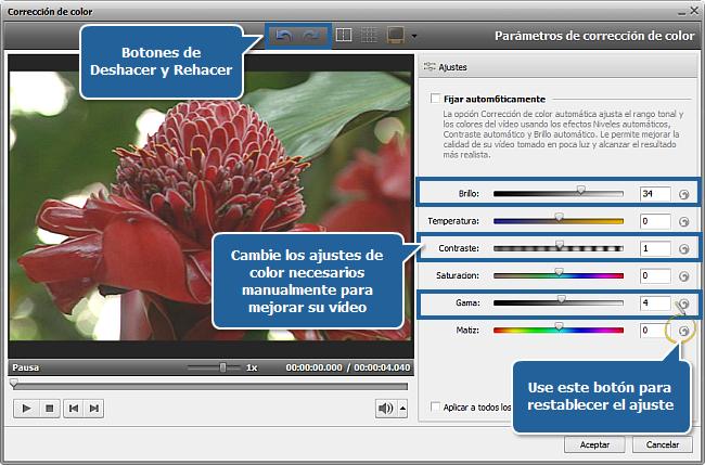 ¿Cómo mejorar vídeo demasiado oscuro con AVS Video Editor?  Paso 2