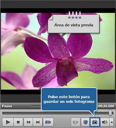 ¿Cómo exportar imágenes de vídeos? Paso 4