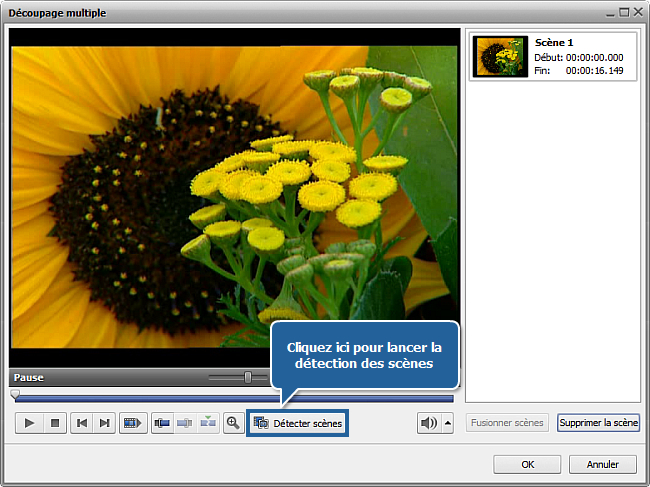 Comment traiter un DVD personnel en utilisant AVS Video ReMaker? Etape 3
