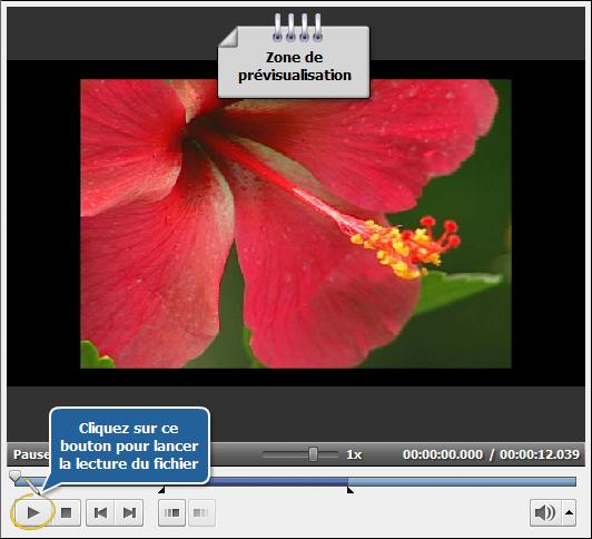 Comment nettoyer une vidéo floue en utilisant AVS Video Editor? Etape 4