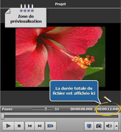 Comment éliminer des artefacts d'entrelacement en utilisant AVS Video Editor? Etape 2