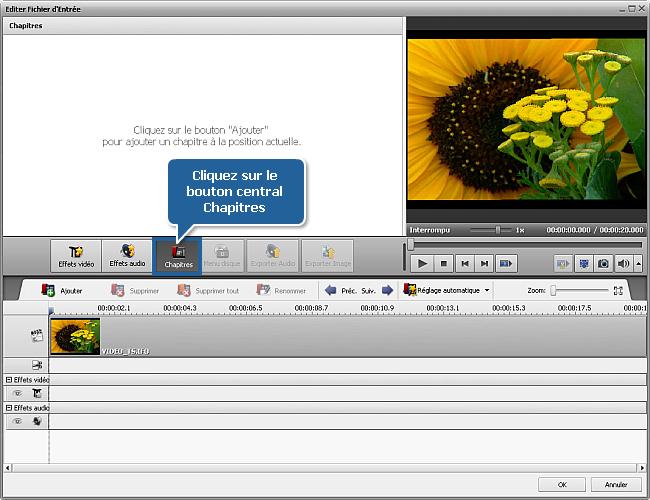 Comment convertir les épisodes DVD en fichiers séparés? Etape 5
