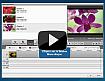Comment convertir vos fichiers vidéo en DVD ? Cliquez ici pour regarder
