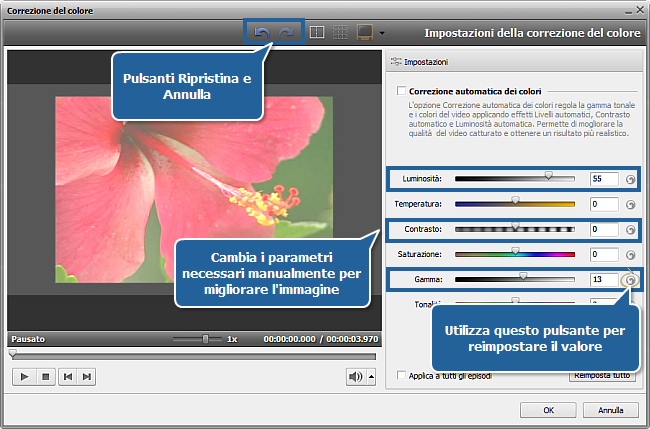 Come schiarire un video troppo scuro con AVS Video Editor? Passo 2
