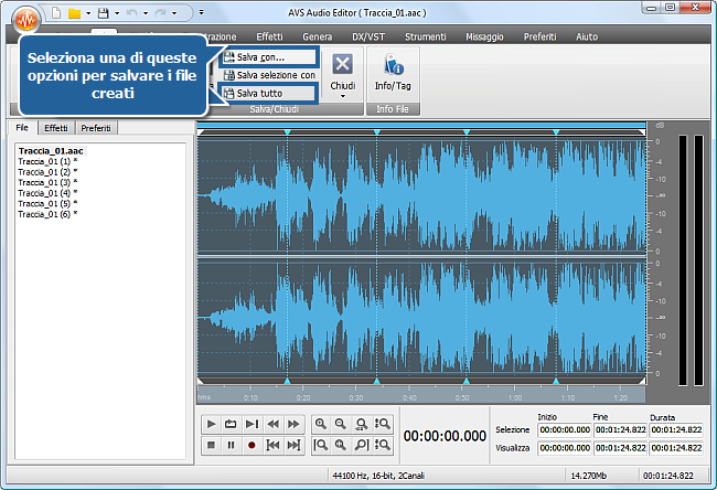 Come dividere un file audio in tracce separate con AVS Audio Editor? Passo 5