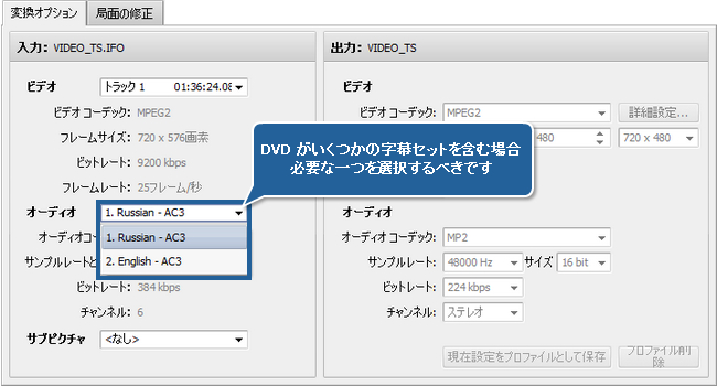 字幕付きビデオの変換方法。ステップ 3