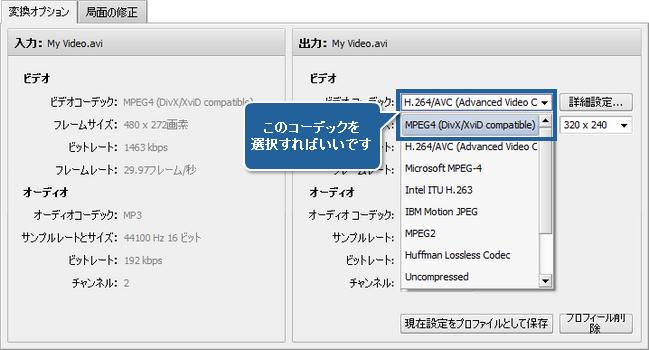 AVS Video Converter でマルチパス変換を実行する方法。ステップ 4
