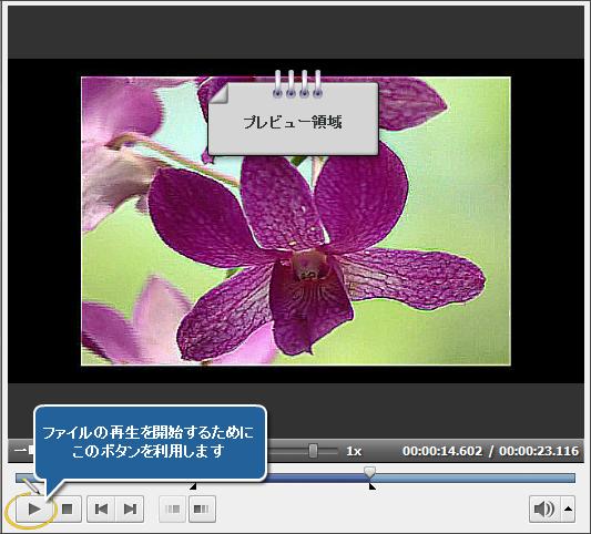 AVS Video Editor で動画からインターレースを除去する方法。ステップ 4