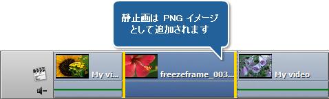 動画のフレームを凍結する方法。ステップ 1