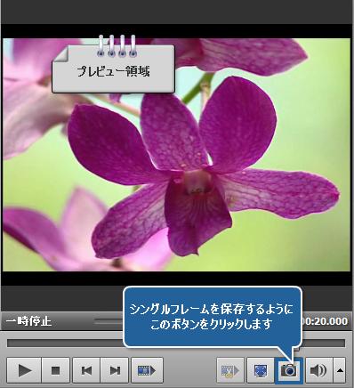 ビデオからイメージをエクスポートする方法。ステップ 4